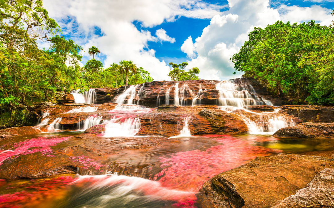 Oggi vi portiamo alla scoperta del fiume dei 5 colori
