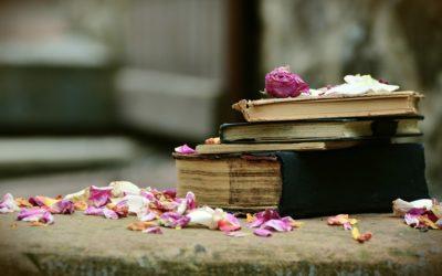 Se ami i libri devi assolutamente visitare Bécherel.