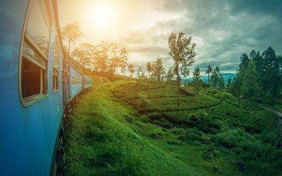Sri Lanka un paese tutto da scoprire